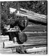 Ddp Djd B And W 1880s Log Cabin Ruins Montana 2 Acrylic Print