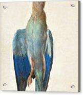Dead Blue Roller Acrylic Print