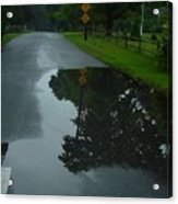 Dead End Puddle Acrylic Print by Ron Sylvia