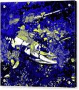 Dead Salmon 5 Acrylic Print