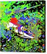 Dead Salmon 7 Acrylic Print
