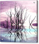 Dead Trees Colored Version Acrylic Print
