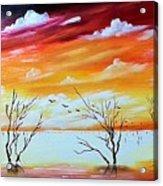 Dead Trees Reflection Acrylic Print