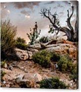 Deadwood Sunset Acrylic Print