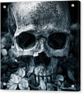 Death Comes To Us All Acrylic Print
