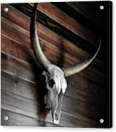 Death Of A Longhorn Acrylic Print