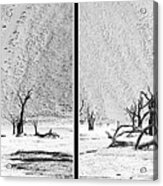 Death Valley - Namibia Acrylic Print