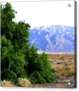 Death Valley 2 Acrylic Print