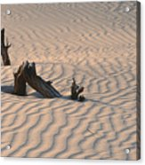 Death Valley Morning Acrylic Print by Sandra Bronstein