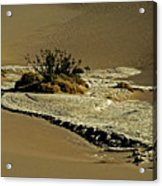Death Valley Salt Acrylic Print