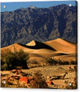 Death Valley's Mesquite Flat Sand Dunes Acrylic Print