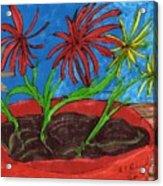 Deck Plant Acrylic Print