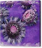 Decorative Sunflowers A872016 Acrylic Print