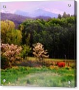 Deep Breath Of Spring El Valle New Mexico Acrylic Print