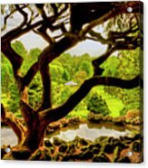 Deep Cuts Gazebo Between The Tree Branches Acrylic Print