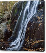 Deep Hallow Falls Virginia Acrylic Print