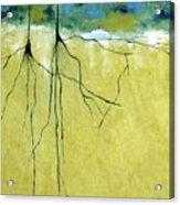 Deep Roots Acrylic Print