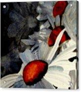 Deep Shadows Acrylic Print