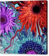Deep Water Daisy Dance Acrylic Print by Christopher Beikmann