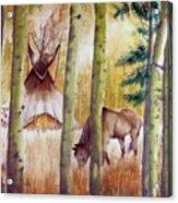 Deep Woods Camp Acrylic Print
