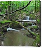 Deep Woods Stream 2 Acrylic Print