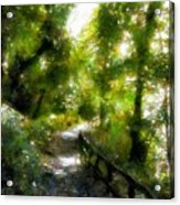 Deeper Into The Greenwood Acrylic Print