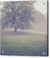 Deer By Barn On A Foggy Morning Acrylic Print