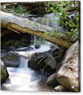 Deer Creek 03 Acrylic Print