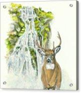 Deer In The Mist Acrylic Print