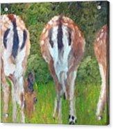 Deer Moon Acrylic Print