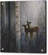 Deer Pair Acrylic Print
