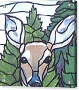 Deer Scene Acrylic Print