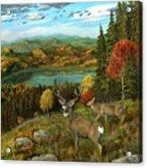 Deer Season Acrylic Print