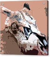 Deer Spirit Acrylic Print