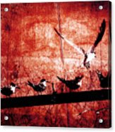 Defiance Acrylic Print