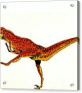Deinonychus Acrylic Print