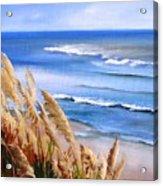 Del Playa Acrylic Print