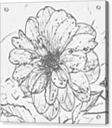 Lush Blossom Acrylic Print