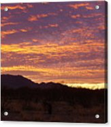 Delightful Sky Acrylic Print