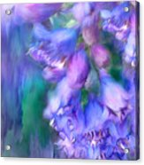 Delphinium Abstract Acrylic Print