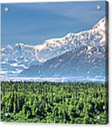 Denali Panorama Acrylic Print