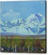 Denali Park Alaska Acrylic Print