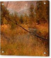 Deschutes River Abstract Acrylic Print