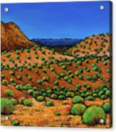 Desert Afternoon Acrylic Print