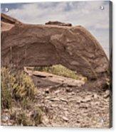 Desert Badlands Acrylic Print