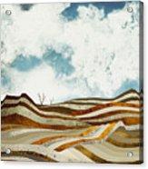 Desert Calm Acrylic Print