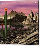 Desert Cartoon Acrylic Print