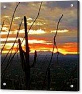 Desert City Sunset Acrylic Print