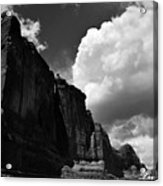Desert Colossus Acrylic Print
