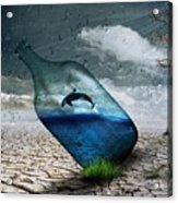 Desert Dolphin Bottle Nature Acrylic Print